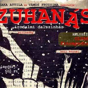 ZUHANÁS2-nov12_low.jpg